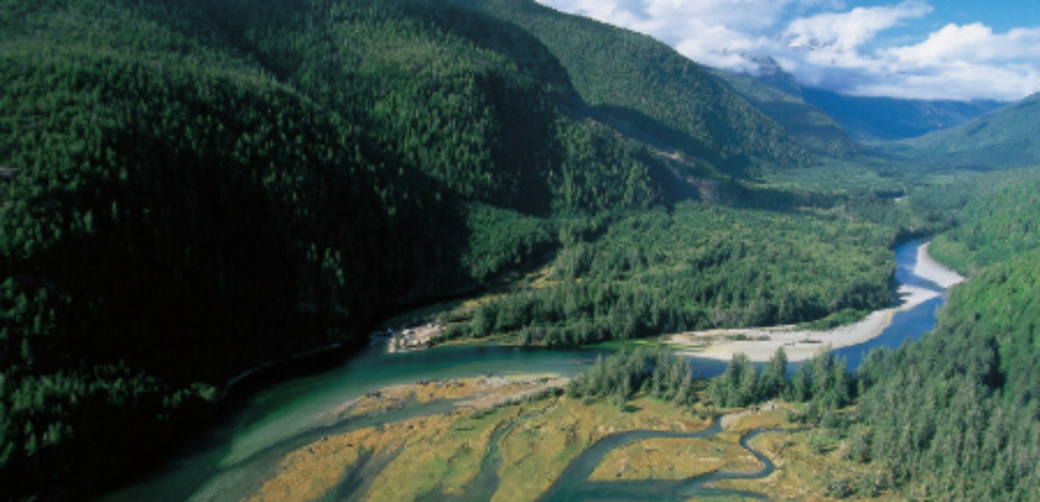 Area surrounding Bedwell River Outpost in Vancouver