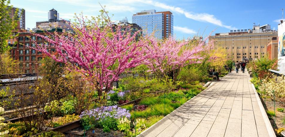 The High Line, NY