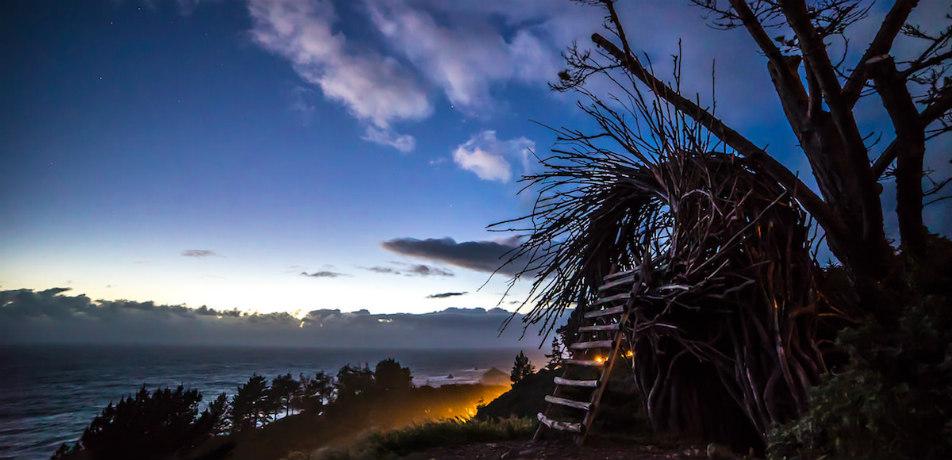 Treebone Resort - human bird nest campsite