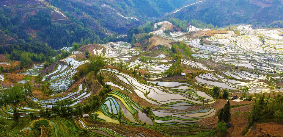 Yuanyang Rice Terraces, China
