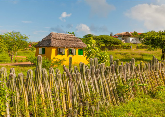 House with cactus fence, Bonaire