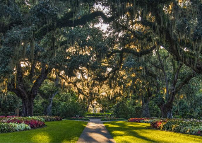 Brookgreen Gardens in Myrtle Beach, SC