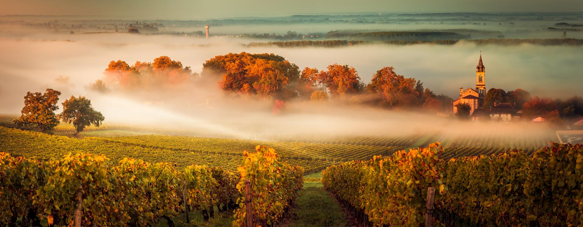 Bordeaux, France esperanza33-istock