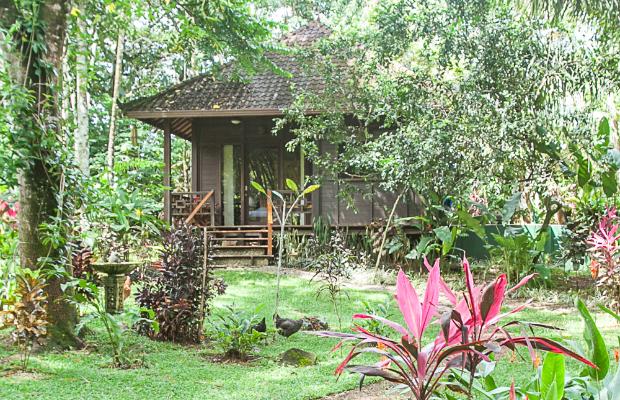 Bali Rica