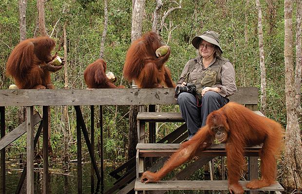 Dr. Birute Mary Galdikas & Orangutans